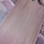 Sinker Cedar